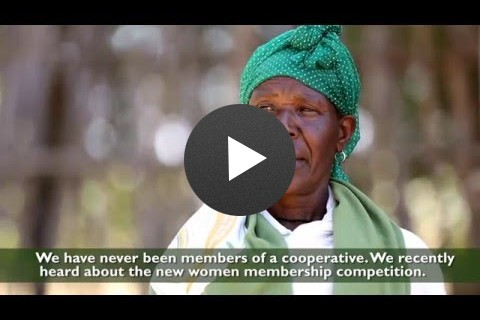 Promoting the Inclusion of More Women Members in Farmers' Cooperatives
