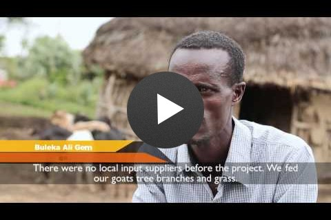 Bridging the Agricultural Supply Gap in Rural Ethiopia