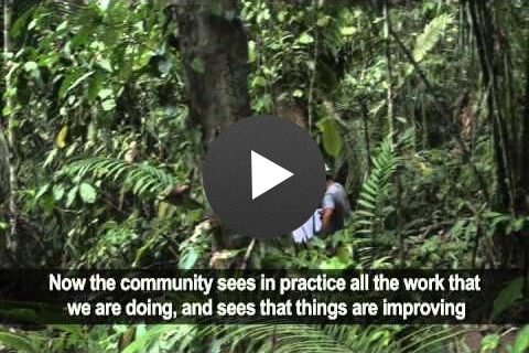 Community Forestry Oversight - Perú Bosques