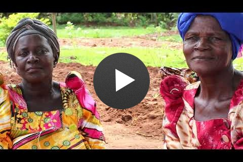 USAID and Send a Cow: Agriculture for women with disabilities