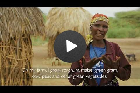 Selinas Green Desert: Building Resilience in East Africa