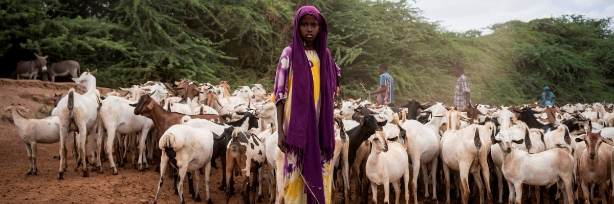 A young girl herding goats in Northern Kenya