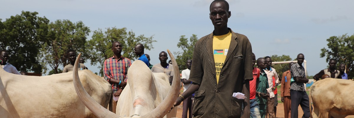 USAID supported South Sudan's first-ever Livestock Show in mid-July in Rumbek, with prizes awarded for healthy livestock