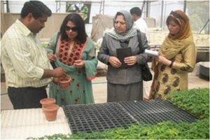 Afghan Women's Business Council managers Mahooba Waizi and Khubera Zaifi are shown modern vegetable propagation methods at the I