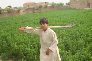 Ten-year-old Zarif tends his fields, which he irrigates using assistance from USAID.