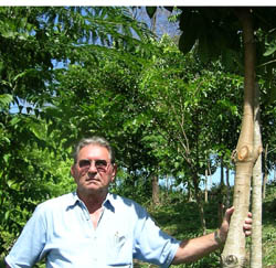 Anthenor Pianna proudly shows one of his Atlantic Forest trees in Brazil's state of Espirito Santo.