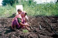 Farmers in Maharashtra now have access to modern, low-cost irrigation technologies.