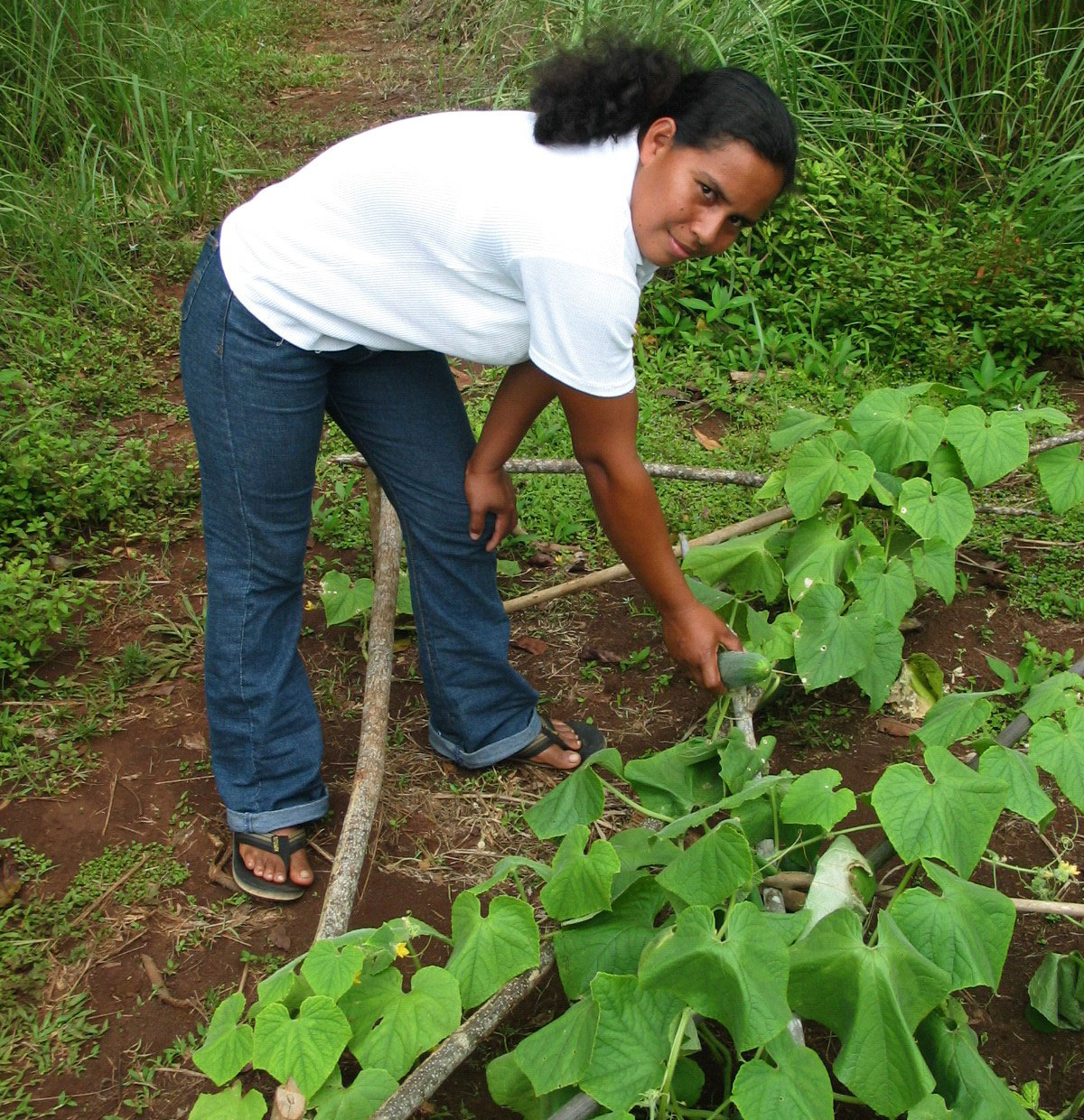 María Leisa Rodríguez manages the bountiful harvests of her farm.