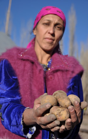 Saodat Shabonova holds some of the potatoes she grew from true potato seeds.