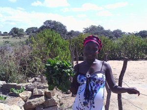Sethule Mpofu holding fresh spinach that her family sells for 50 Rand per bunch.