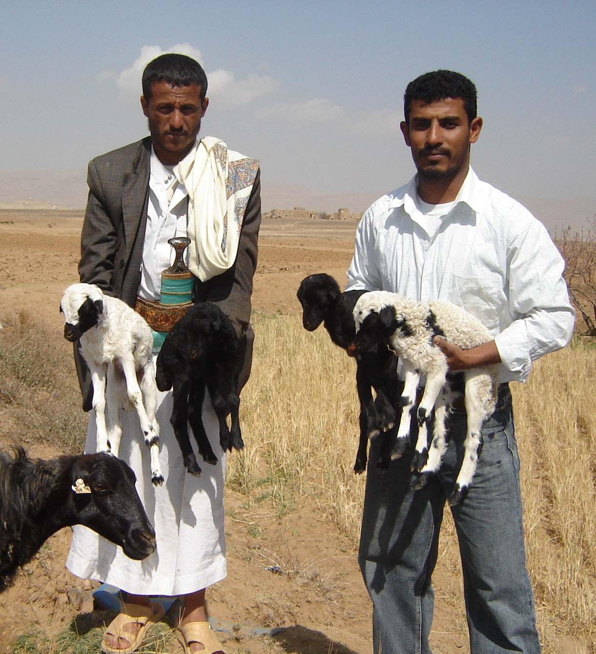 Mohamed Ahmed Alawili (left) and a local USAID-funded agricultural support program's extension agent proudly display a quadruple