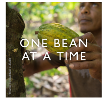 One Bean at a Time - click to read. Photos by Thomas Cristofoletti for USAID
