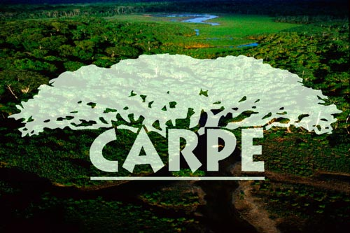 The Central Africa Regional Program for the Environment (CARPE)