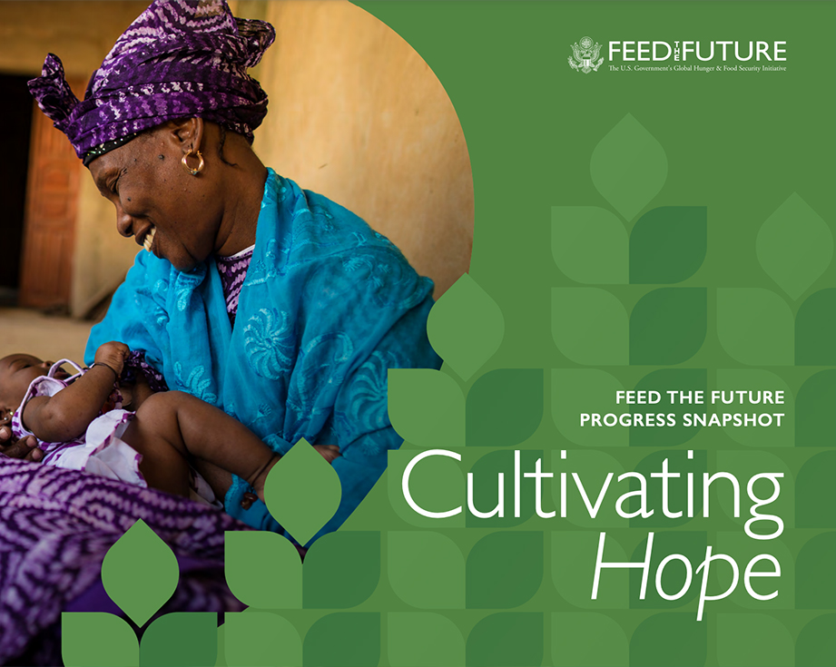 Feed the Future Snapshot 2020