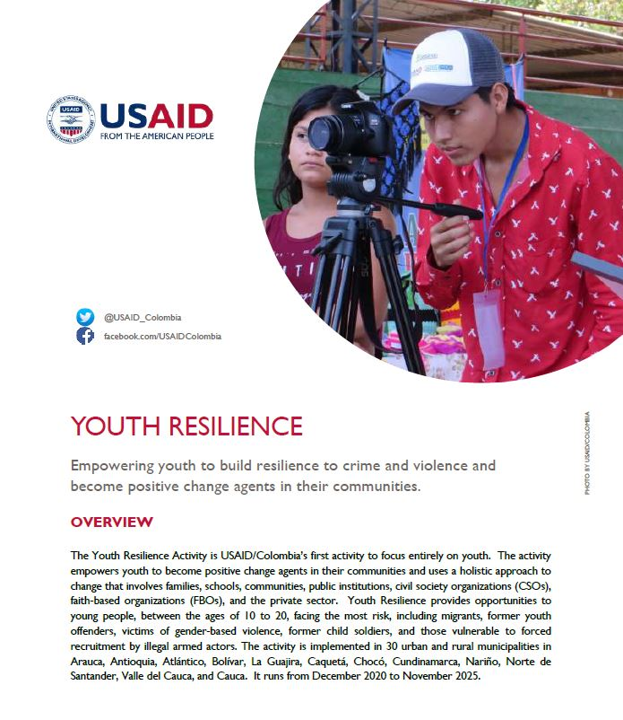 Youth Resilience Fact Sheet